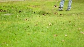 Meja att arbeta i trädgården för fält för grönt gräs stock video