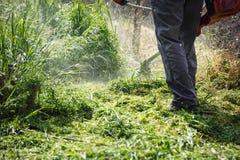 Meja beskäraren - gräs för manarbetarklipp Arkivbilder