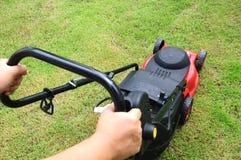 Meja för gräsmatta Royaltyfri Fotografi