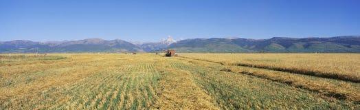 Meja för traktor arkivbild