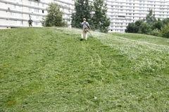 Meja gräset Royaltyfri Foto