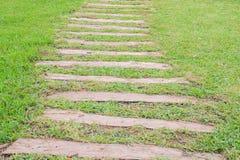 Meja gräset på gångbanan Royaltyfria Bilder