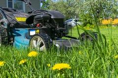 Meja gräsmattor Lawngräsklippningsmaskin på grönt gräs Gräsklippningsmaskingräsutrustning Meja hjälpmedlet för trädgårdsmästareom Arkivfoton