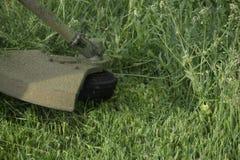 Meja grönt gräs genom att använda en revbeskärare Arkivfoto