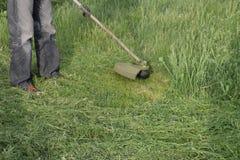 Meja grönt gräs genom att använda en revbeskärare Royaltyfria Foton