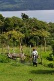 Meja i Costa Rica arkivbilder