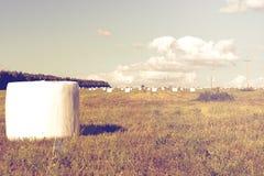 Mejat hö i det förpackande fältet Royaltyfri Fotografi