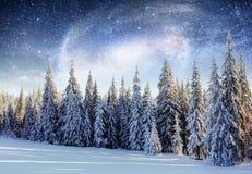 Mejeri Star Trek i vinterträna Dramatisk och pittoresk sc arkivbilder