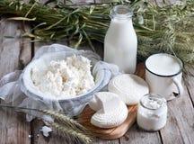 Mejeriprodukter och korn Royaltyfri Bild