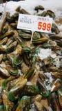 Mejillón vendido en Sydney Fish Market Imagenes de archivo