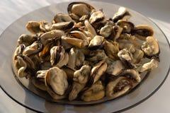 Mejillones apetitosos hervidos del mar Imágenes de archivo libres de regalías