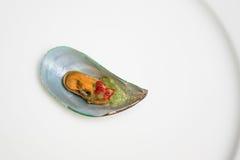 Mejillones cocidos al vapor picantes Fotografía de archivo libre de regalías
