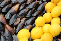 Mejillones con el limón Imagen de archivo