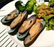 Mejillones con la ensalada fresca Foto de archivo libre de regalías