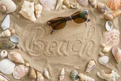 Mejillones en la arena Fotografía de archivo libre de regalías