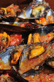 Mejillones a la marinera, spanish mussels in marinara sauce. Closeup of a plate with mejillones a la marinera, spanish mussels in marinara sauce stock image