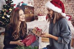 Mejores amigos durante tiempo de la Navidad imagen de archivo libre de regalías