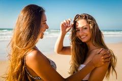 Mejores amigos en la playa Imagen de archivo