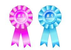 Mejores amigos por siempre azul y color de rosa de la concesión del rosetón Fotografía de archivo libre de regalías