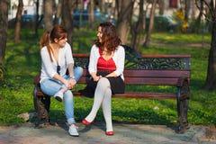 Mejores amigos que hablan en el parque Imagen de archivo