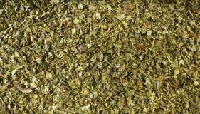 Mejramörtbakgrund Naturlig krydda textur arkivfoton
