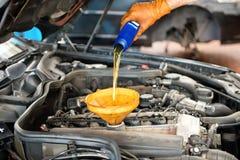Mekaniker som överträffar upp oljan i en bil royaltyfri bild