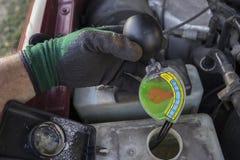 MekanikerChecking Strength Of frostskyddsvätska Arkivbild
