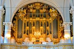 mekaniskt organ Royaltyfri Foto