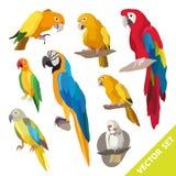 Mekaniskt säga efter fåglar stock illustrationer
