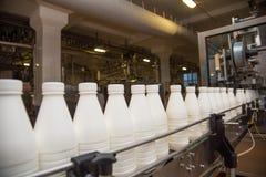 Mekanism-linjen för att buteljera mjölkar i flaskor på ett modernt mejeri pl Royaltyfria Bilder