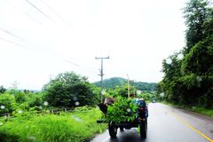 Mekhong Imagens de Stock