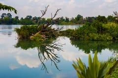 Mekhong rzeka od Don Det Zdjęcie Royalty Free