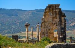 Meknes, Maroc 2 JUIN 2012 : Ruines romaines dans Volubilis, site de patrimoine mondial de l'UNESCO Images libres de droits