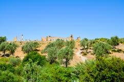 Meknes, Maroc 2 JUIN 2012 : Ruines romaines dans Volubilis, site de patrimoine mondial de l'UNESCO photo stock
