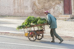 MEKNES, MAROKKO - 18. FEBRUAR 2017: Nicht identifizierter Mann, der in die Straße von Meknes, Marokko geht Meknes ist eins der vi Stockfotografie