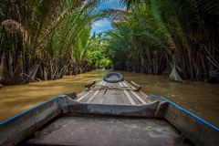 Boattrip on the Mekong through the rainforest of vietnam royalty free stock images