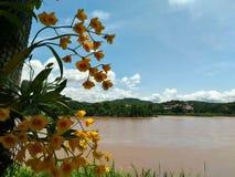 Mekong ποταμός Στοκ εικόνες με δικαίωμα ελεύθερης χρήσης
