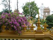 Mekong Delta_5 arkivbilder