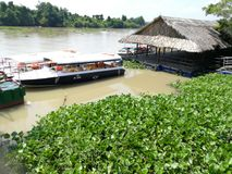 The Mekong Delta River Ho Chi Minh City. The Mekong Delta, also known as the Western Region or the South-western region is the region in southwestern Vietnam stock photo