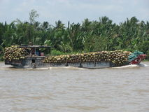 Mekong Delta Stock Photo