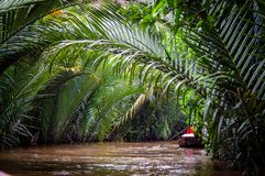 Mekong Delta Boat Trip Vietnam South East Asia stock image
