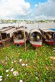 Mekong delta, Can Tho, Vietnam. Boats in a harbor in the Mekong delta, Can Tho, Vietnam Royalty Free Stock Images
