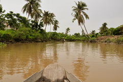 Mekong Delta, Can Tho, Vietnam. Mekong Delta around Can Tho in Vietnam. Picture taken from a boat Stock Photos