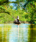 Mekong delta, Can Tho, Vietnam Arkivfoton