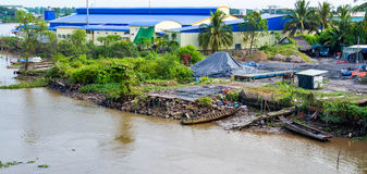 Mekong delta, Can Tho, Vietnam. Fragment of bank of the river Mekong in delta, Can Tho, Vietnam Stock Image