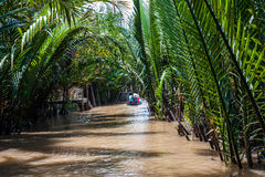Mekong delta i södra Vietnam Royaltyfria Foton
