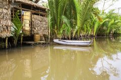 Mekong Delta Royalty Free Stock Photo