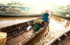 Mekong Delta Royalty Free Stock Photo