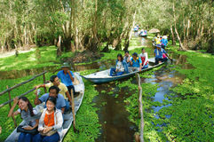 Mekong Delta, Tra Su indigo forest, ecotourism stock image