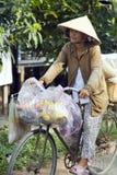 MEKONG DELTA, VIETNAM - MAJ 2014: Cykla med den vietnamesiska hatten Arkivfoto